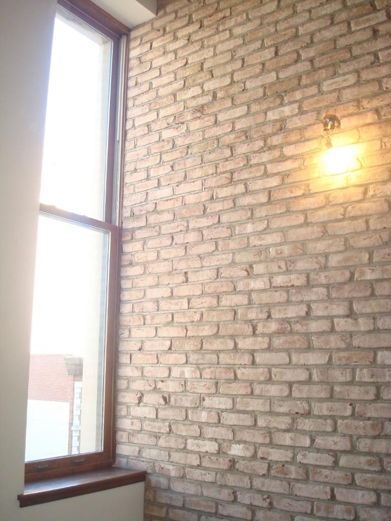 Tru Bricks Wall
