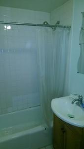 Bathroom remodeling,New Maple hardwood floor